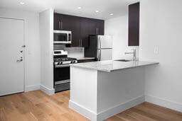 apartment kitchen with black and white color scheme and light-colored hard wood flooring
